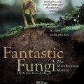 Fantastic Fungi