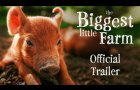 The Biggest Little Farm [Official Trailer]