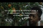 ARRAY's BURNING CANE Official Trailer | Directed by Phillip Youmans